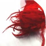 Galon plumes rouges **