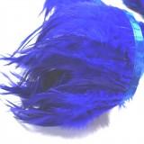 Galon plumes bleues**