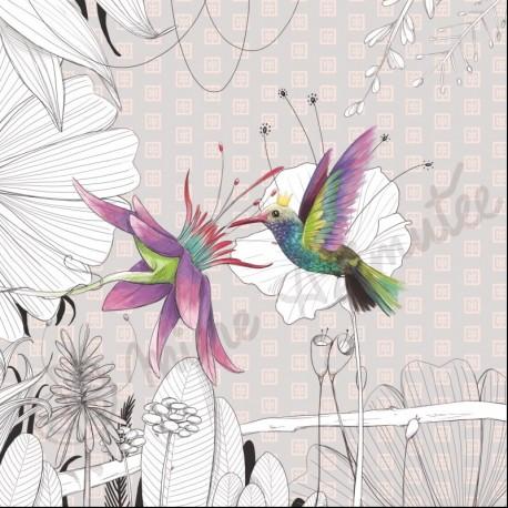 Coupon illustré Colibri