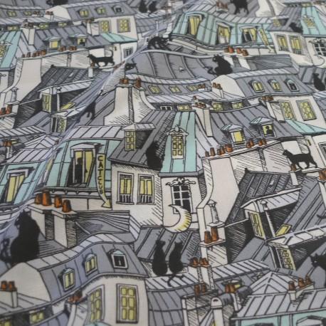 Tissu toits de Paris