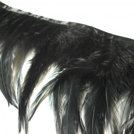 Galon plumes noir jais **